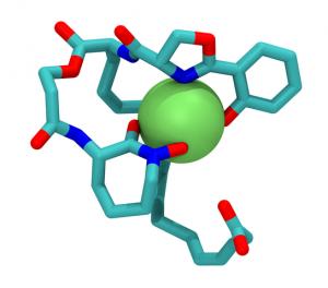 Mycobactin T , ein bakterielles Siderophor, mit Eisenion. © gemeinfrei.