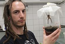 Ingo Grawe, Erstautor der Studie, mit einer Spinne deren Haftscheiben die Forscher untersuchten. ©  Jonas Wolff