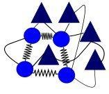 Netzwerk aus Nervenzellen in der Hirnrinde (Federn: elektrische Synapsen, Linien: chemische Synapsen). Die elektrischen Synapsen sind wichtig für rhythmische Netzwerk-weite Aktivitätsschwankungen. © MPI f. Hirnforschung/ T. Tchumatchenko