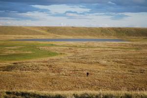 Thermokarst Thermokarst-Senke mit kleinem Thermokarst-See auf der Bykovsky-Halbinsel, sibirische Arktis. © Alfred-Wegener-Institut / Thomas Opel