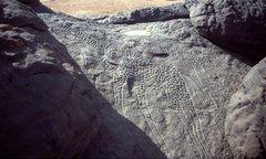 Etwa 8.000 Jahre alte, lebensgroße Felsgravur zweier Giraffen aus Dabous, Niger, die zeigen, dass die Sahara zu dieser Zeit eine grüne, fruchtbare Savanne war. Foto: Albert Backer via Wikimedia Commons, CC BY-SA 3.0