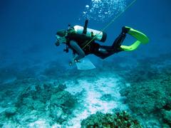 Auf dem Weg ins Riff Eine Forschungstaucherin auf dem Weg zu einem Riffabschnitt in der Andamanensee, dessen Korallenbestand sie dokumentieren will. ©  Gertraut M. Schmidt, Alfred-Wegener-Institut