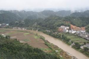 Eine neue Studie zeigt, dass diese Abholzung, einen Verlust der Artenvielfalt in angrenzenden Fließgewässern zur Folge haben kann. © M. Kuemmerlen