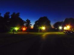Die Schattenseiten der Straßenbeleuchtung: Nächtliches Kunstlicht verändert das Singverhalten von Vögeln. © MPI für Ornithologie