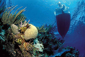 Korallenriff und Boot. © Alfred-Wegener Institut.