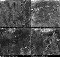 Die Rasterelektronenmikroskop (REM) Aufnahme zeigt Rillen im kariösen Zahnloch die vermutlich von steinzeitlichen Klingen stammen. © G. Oxilia