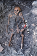 Der Backenzahn gehört zu dem 14.000 Jahre alten Skelett, das 1988 in der Felshöhle von Riparo Villabruna in Norditalien gefunden wurde. © A. Broglio.
