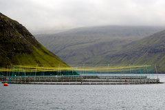 Aquakulturanlage vor den Färöer-Inseln, © Jan Steffen, GEOMAR