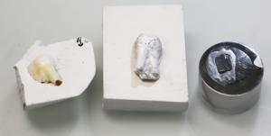 Das natürliche Vorbild in der Gipsform (l.), das Imitat aus dem neuartigen Verbundmaterial, das bereits gesintert wurde, sowie ein in einen Sockel eingepasster Kunstzahn, der für die Elektronenmikroskopie mit Platin beschichtet wurde. © Tobias Niebel/ETH Zürich