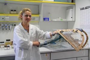 Aufnahme aus dem ICEFLUX-Labor am AWI Bremerhaven. Doktorandin Carmen David zeigt ein Modell des Unter-Eis-Netzes SUIT, mit dem die Wissenschaftler ihre Proben fangen. © AWI. Sina Löschke. Hintergrund ICEFLUX: Die AWI-Nachwuchsgruppe unter der Leitung von Dr. Hauke Flores untersucht, welche Organismen im Meereis und darunter leben, welche Eisbedingungen sie bevorzugen und in welchem Maße sie von Eisalgen als Futterquelle abhängen.