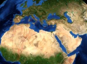 Anhand der globalen Wetterdaten der letzten 21 Jahre haben Forscher ein Modell entwickelt, mit dem sie die optimalen Migrationsrouten von Zugvögeln berechnen können. Die kürzeste Flugzeit ergibt sich dabei nicht nicht aus der kürzesten Strecke. Das Modell berücksichtigt auch räumliche und zeitliche Änderungen der Windverhältnisse. © http://www.bioinfo.mpg.de/flyways / Nasa/ Blue Marble
