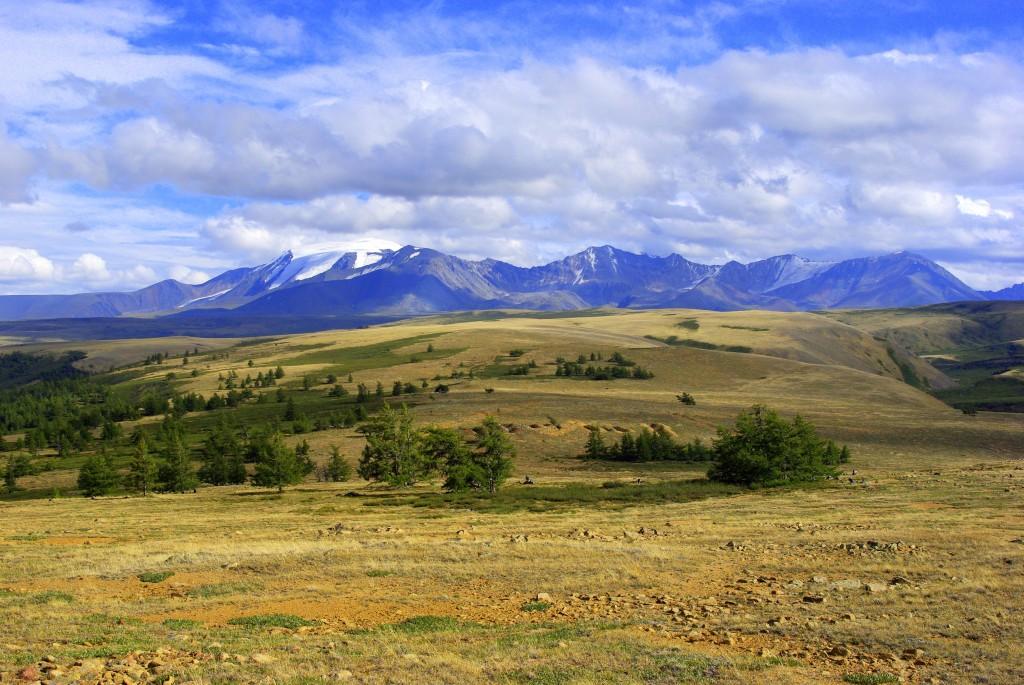 Neue Jahrringmessungen aus dem russischen Altai-Gebirge deuten auf eine drastische Kälteperiode vor 1500 Jahren hin. © Vladimir S. Myglan