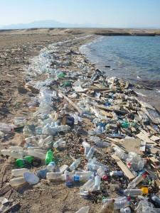 Plastikmüll am Strand des Roten Meeres. © public domain.