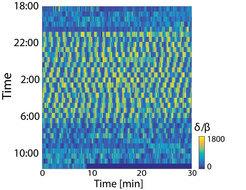 Die Wellen des Schlafs: Die Abbildung zeigt die zeitliche Entwicklung des Verhältnisses zwischen 0-4 Hertz- und 10-30 Hertz-Schwingungen (δ/β). Die Reihen repräsentieren 30-Minuten-Abschnitte beginnend von links oben nach rechts unten. Nach Ausschalten der Beleuchtung (19:00) nehmen die Tiere eine typische Schlafhaltung ein, und die Amplitude der Schwingungen steigt an (gelb). Nach dem Aufwachen gehen die Schwingungen dann wieder zurück. © MPI f. Hirnforschung/ M. Shein-Idelson, J. Ondracek, H.-P. Liaw, S. Reiter and G. Laurent