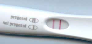 Mit dem neuen Schnelltest soll der Nachweis von Pyrogenen, Bestandteilen von krankheitserregern, so einfach wie ein Schwangerschaftstest werden. © public domain.