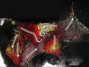 """Strömungskarte im dritten Ventrikel des Maushirns mit den Strömen entlang der Ventrikelwand (farbige Linien) und den Hauptstromrichtungen (weiße Pfeile) in einzelnen Bereichen. Die verschiedenen Farbbereiche auf den Bildern zeigen, dass Flimmerhärchen sich je nach Ort in sehr unterschiedliche Richtungen bewegen und so ein """"Straßensystem"""" bilden. © MPI f. biophysikalische Chemie/ R. Faubel, H. Sebesse"""
