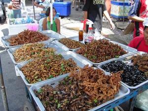 Gebratene Insekten auf einem Markt in Bangkok. © Takoradee. CC BY-SA 3.0.